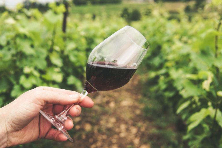 Einladung zur Weinmesse
